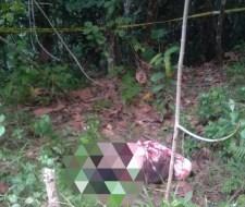 Mayat Terbungkus Kain Ditemukan di Hutan Wolasi