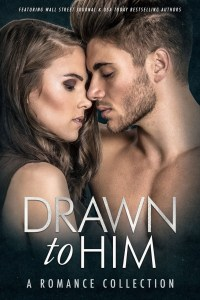 Review: One Night by K.L. Kreig featured in the Drawn to Him Anthology