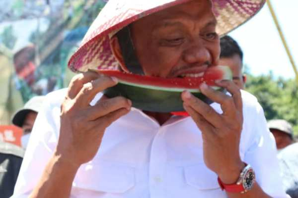 Mari Jo Bakobong Semangka Desa Bajo, Gubernur Olly Lindungi Aset Petani dan Peternak Sulut Lewat Asuransi