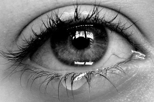 El cerebro nunca llora sin razón