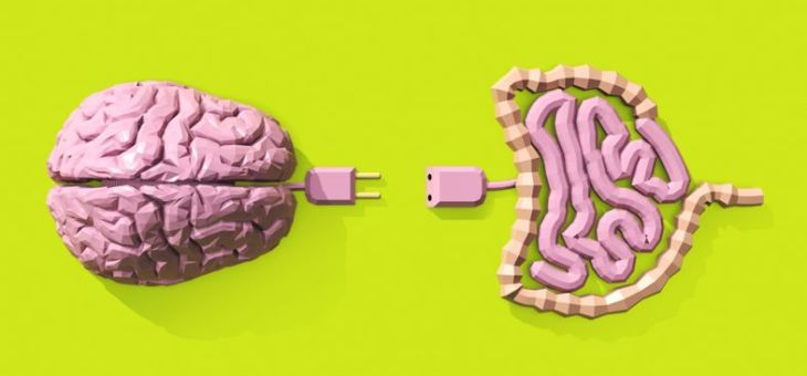 El eje intestino (microbiota) – cerebro