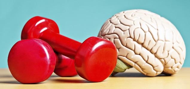 7 formas de entrenamiento mental para ejercitar tu cerebro