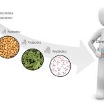 Microbiota al poder