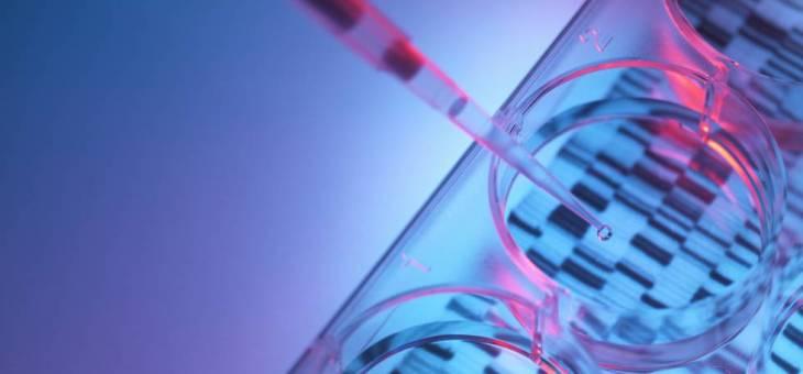 La epigenética, la causa por la que los niños heredan el sufrimiento de sus padres