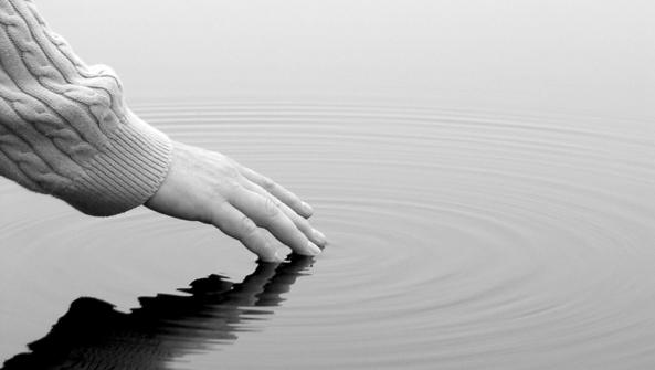 Ignorar las emociones nos autodestruye