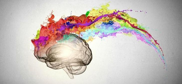 El éxito o el fracaso esculpen tu cerebro