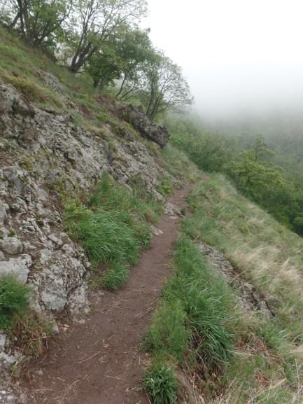 Az ösvényen immár