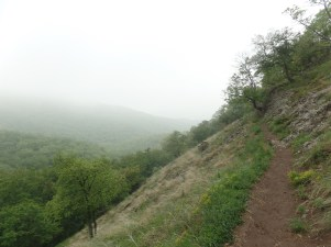 Kissé ködös