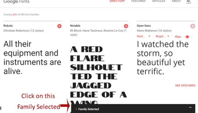 Google fonts download selected font image