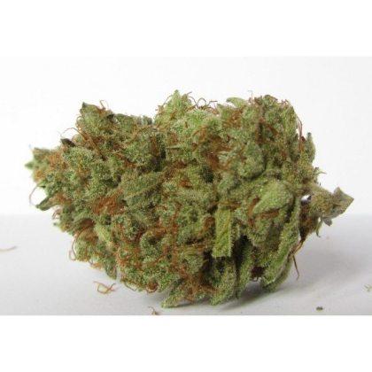 Buy Candyland Marijuana online