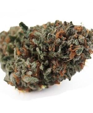 Medicinal Marijuana, About