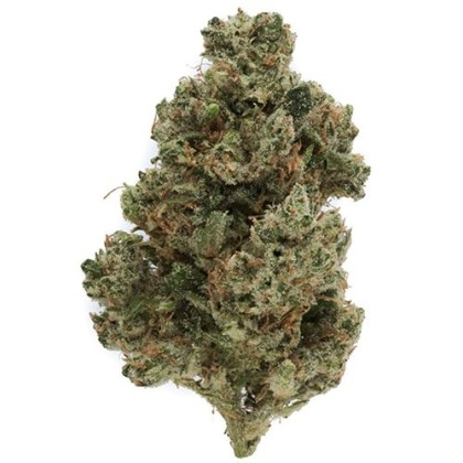 Buy Ghost Train Haze online