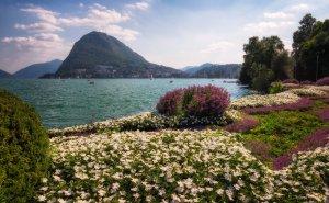 Jezioro Lugano w Alpach | Szwajcaria