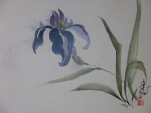 Carol Waite - Bending Iris