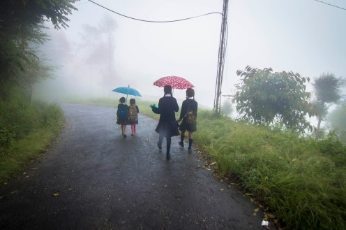 A very common Sight on the Roads of Sikkim. Children of all ages walking 1-2 km to reach school.