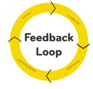 Feedback loop in social proof marketing
