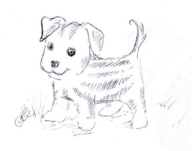 1-13-puppymelon