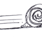 Charlie's Room: The Snail