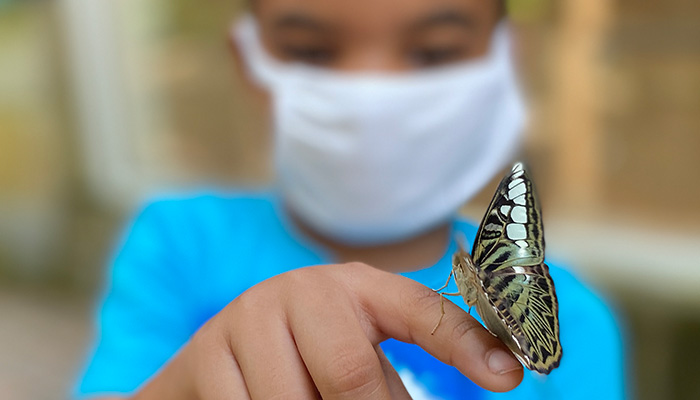 A kid with a butterfly on his finger