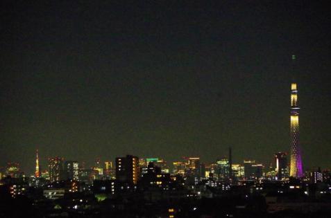 左端に東京タワー、右端に'雅'のスカイツリー
