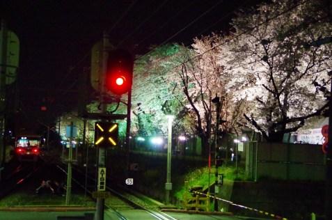 新京成線くぬぎ山駅にて