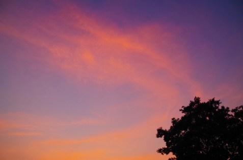 会場近くの夕焼け空