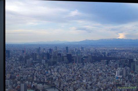 左に東京タワー、右に富士山