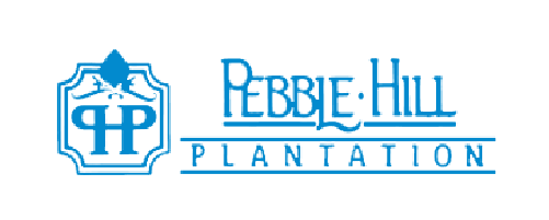 pebble hill plantation-client-summerhill creative-blue