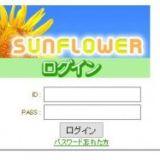SUN FLOWER(サンフラワー)
