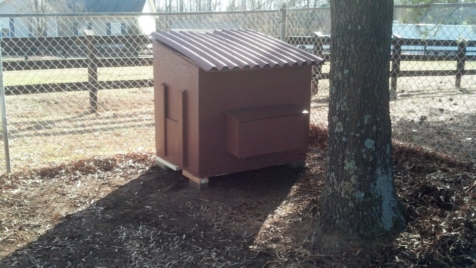 Building a Small Chicken Coop