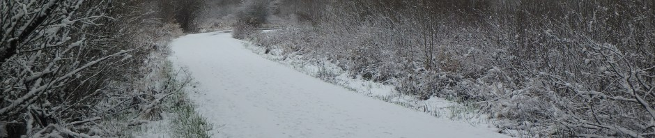 Snowpocalypse 2018; Theology and Weather
