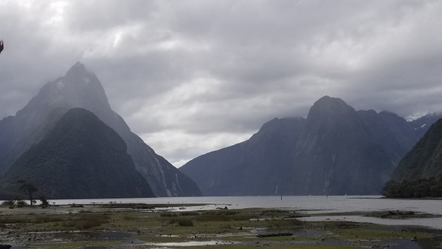 Milford Sound, New Zealand (Fiordland National Park)