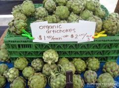 Organic Artichokes