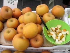 Niitaka Asian Pears
