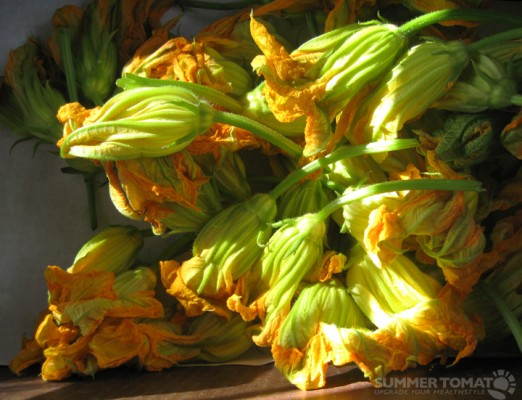 Perfect Squash Blossoms