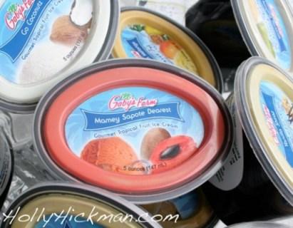 Gaby's Ice Creams
