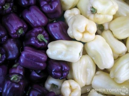 Violet Sweet Peppers