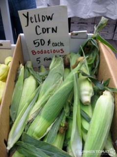 Bodacious Yellow Corn