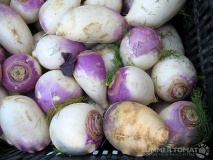 Beautiful Turnips