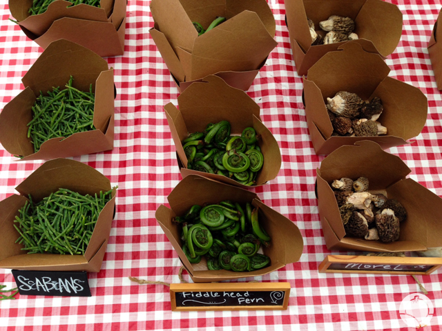 Sea Beans, Fiddleheads and Morels