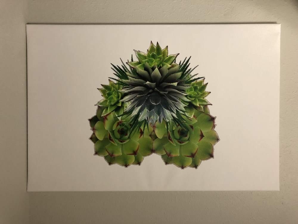canvas print - canvas-print
