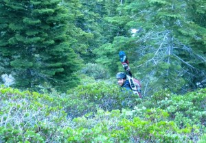 Pat hidden by manzanita bushes, with skis on his back and no snow in sight