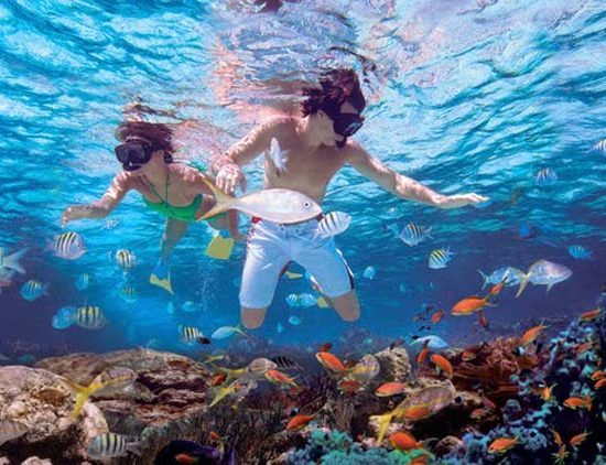 Snorkeling-Punta-Rucia-Puerto-Plata_EDIIMA20131010_0920_13-550×422