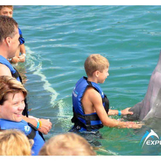 punta-cana-dolphin-explorer-4-550×550