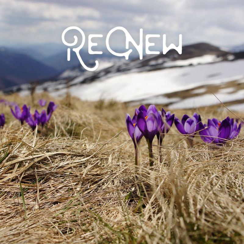 mountain renewal