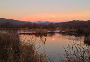 Autumn moonrise.