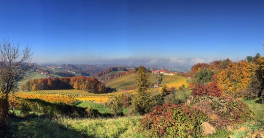 HIlltop pano from the heart of Styrian wine country.