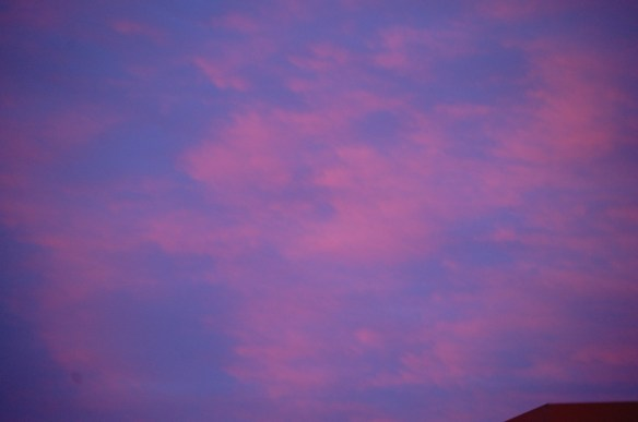 Purples and Pinks over Lexington (photo NOT adjusted)