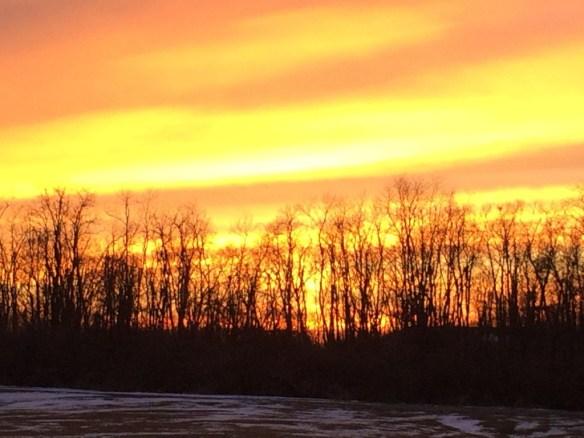 Fiery Orange sky as seen from North Lexington