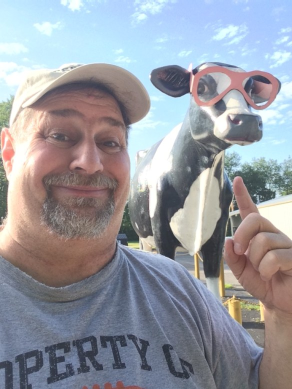 Not only do I find pink elephants with glasses, I can find big cows with PINK glasses - this was in Russellville, KY in June 2014